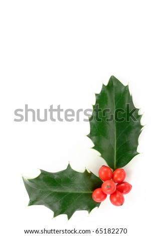 Christmas holly corner. - stock photo