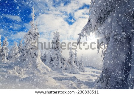 Christmas landscape with snow covered trees in the mountains - stock photo