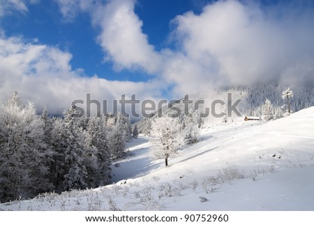 Christmas landscape with snowy chalet in the woods - stock photo