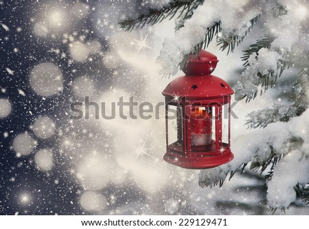 Christmas lantern hanging on pine - stock photo
