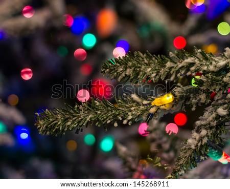 Christmas Lights on the Tree - stock photo