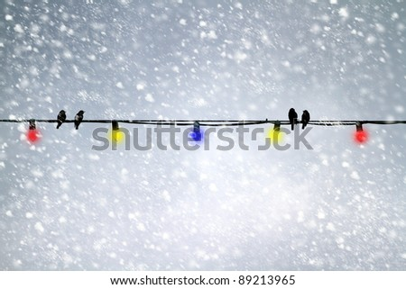 Christmas lights outdoors in a evening snow storm. Four birds in silhouette sit on the electrical wire. Room for text. Illustration - stock photo