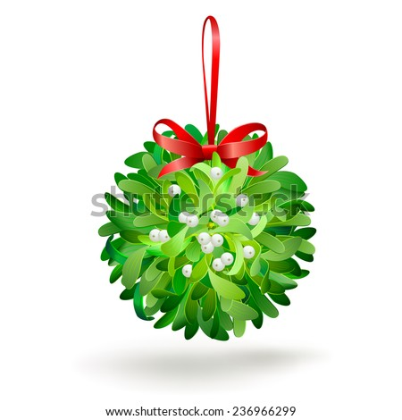 Christmas mistletoe with a red bow