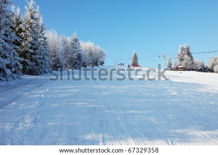 Christmas morning. Snowy winter forest and knurled wide trails. - stock photo