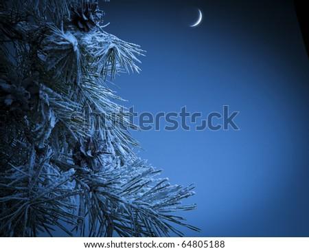 Christmas night - stock photo
