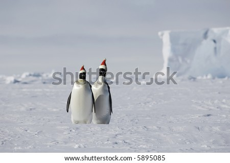 Christmas on ice - stock photo
