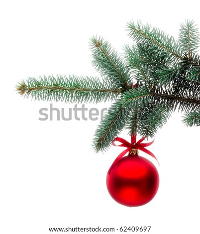Christmas ornament on the tree. - stock photo