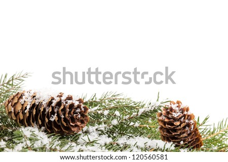 christmas ornament with cones on white background - stock photo