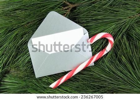 christmas silver envelope on fir tree - stock photo