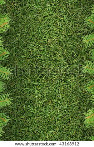 Christmas spruce  texture. Shot in a studio - stock photo