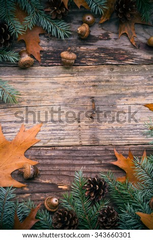 Christmas spruce twigs and cones on wooden background - stock photo