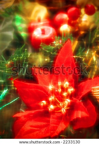 Christmas still life with fruit and flowers - stock photo