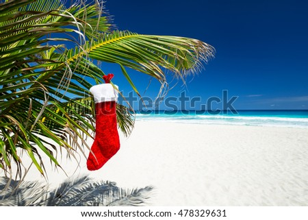 Christmas stocking hanging on coconut palm tree leaf at tropical sandy beach. New Year celebration
