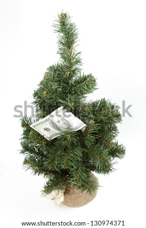 Christmas stocking holding 100 dollar bills Isolated on white/$100 bills growing on a money tree - stock photo