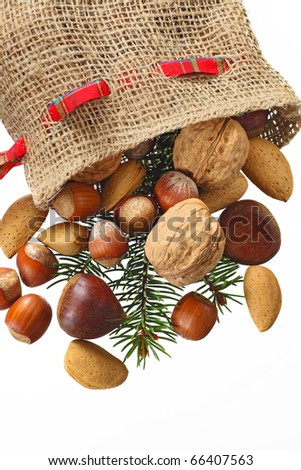 Christmas Stocking with nuts isolated in white - stock photo