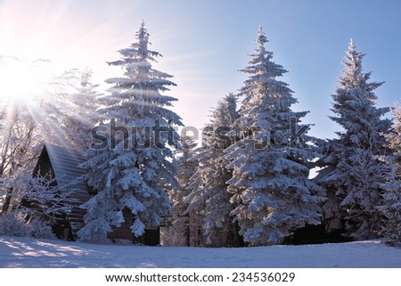 Christmas sunny morning on a mountain ski resort. Houses for tourists in the pine forest covered with snow - stock photo