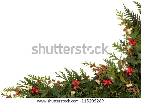 Christmas traditional border of holly, ivy, mistletoe and cedar cypress leaf sprigs with pine cones over white background. - stock photo