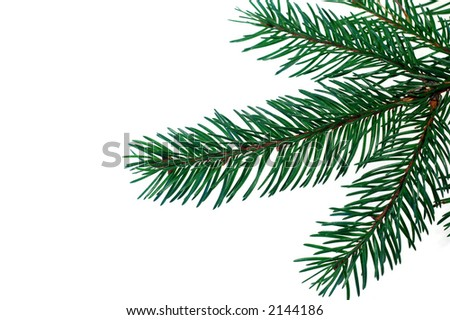 christmas tree #3 - stock photo