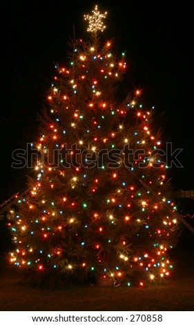 Christmas tree at night. - stock photo