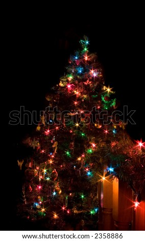 Christmas tree being illuminated by its own lights