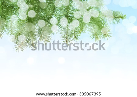 Christmas Tree Branch at the Defocused Lights Background. - stock photo