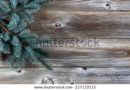 Christmas Tree Branch on Rustic wooden boards - stock photo