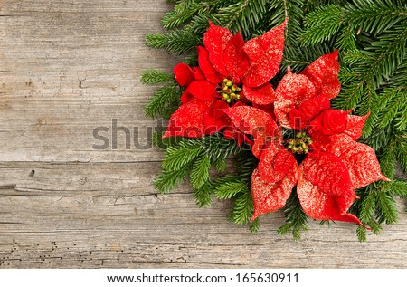 christmas tree branch with red poinsettia flower on wooden background - stock photo