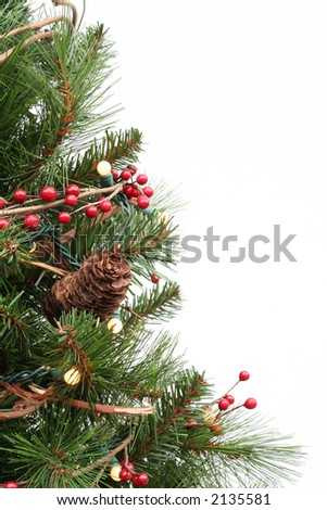 Christmas tree closeup, isolated on white.