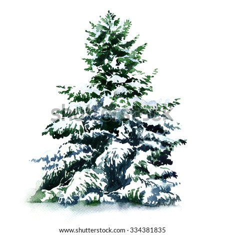 Christmas tree covered snow in winter, isolated - stock photo