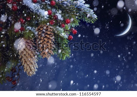 Christmas tree covered with snow on the blue night sky