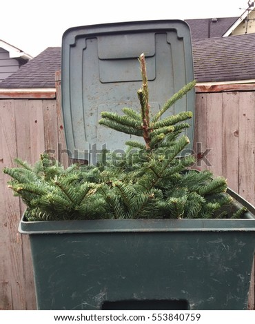 Christmas tree cut up and put into recycling bin.