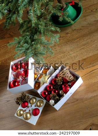 Christmas tree dried up after the Holiday Season - stock photo