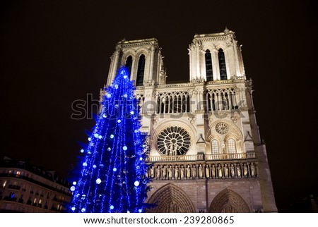 Christmas tree in front of the Notre Dame cathedral in the evening. Paris, France.  - stock photo