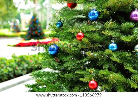 Christmas tree in garden - stock photo