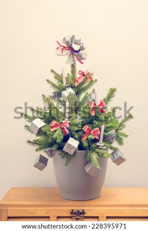 Christmas tree in plant pot - stock photo