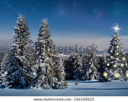 Christmas tree in the mountains - stock photo