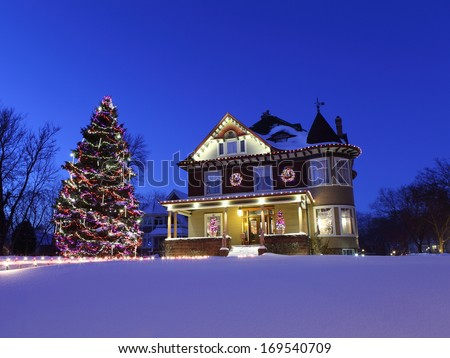 Christmas tree in winter - stock photo