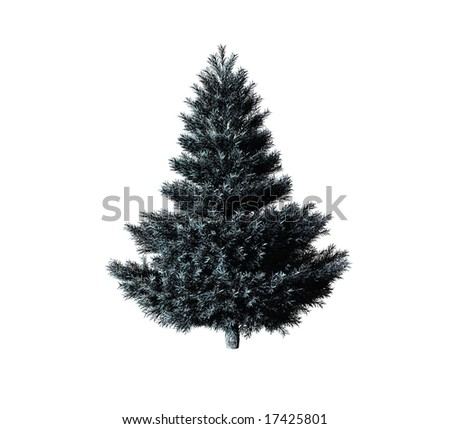 christmas tree isolated on white background - stock photo