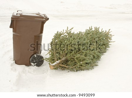 Christmas tree left lying by the dumpster in a snow - stock photo