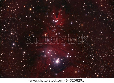 Christmas Tree Nebula or also called NGC 2264. Taken by my telescope and cared by me in post production for details and quality.