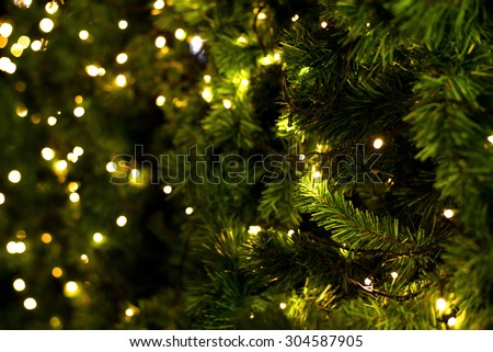 christmas tree on blurred background - stock photo