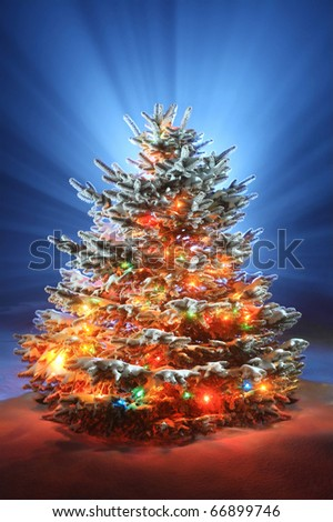 christmas tree on night background, christmas tree with colored lights - stock photo