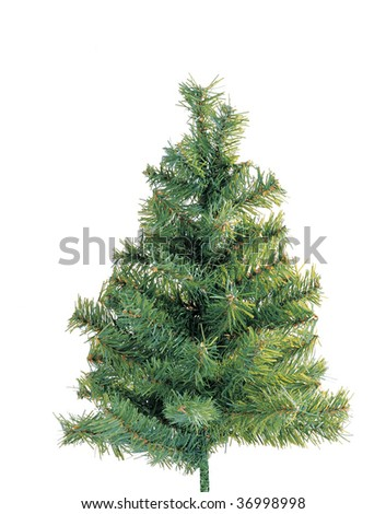 Christmas tree ready for decoration