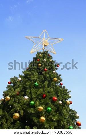 Christmas tree with blue sky - stock photo