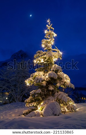 Christmas tree with lights covered with snow - stock photo