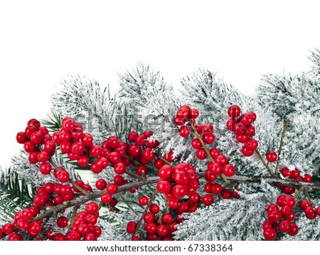 Christmas tree with natural red berries close up  isolated on white - stock photo