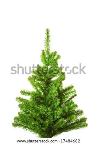 Christmas tree without decoration. Isolated on white background - stock photo