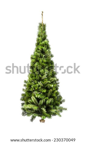 quot christmas tree without ornaments quot stock photos royalty christmas tree without ornaments isolated on a white