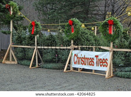 christmas trees for sale - Sales On Christmas Trees