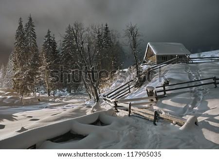 Christmas winter. - stock photo